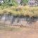 മുളങ്കുന്നത്തുകാവ് മെഡിക്കൽ കോളേജ് ആശുപത്രിയോടു ചേർന്ന്പണിതീർത്ത ജലസംഭരണി ഉപയോഗശൂന്യമാകുന്നു