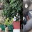 മാവോയിസ്റ്റ് സി.പി ജലീലിന് മൂന്ന് തവണ വെടിയേറ്റെന്ന് ഇന്ക്വസ്റ്റ് റിപ്പോര്ട്ട്; മൃതദേഹം ബന്ധുക്കള്ക്ക് വിട്ടുനല്കും